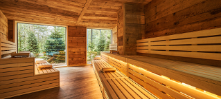 Wooden sauna looking out onto a beautiful woodland scene.