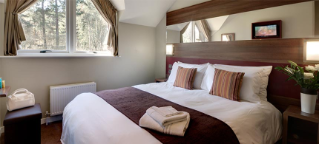 Executive double bed with a dressing table, forest view and large mirror.